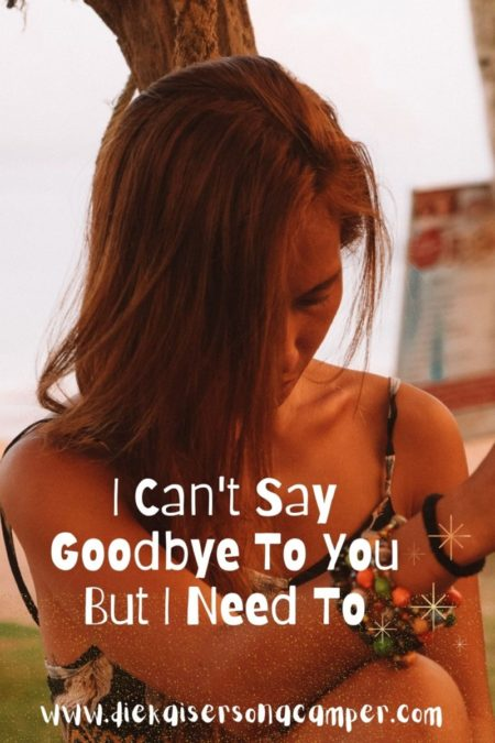 I Can't Say Goodbye To You